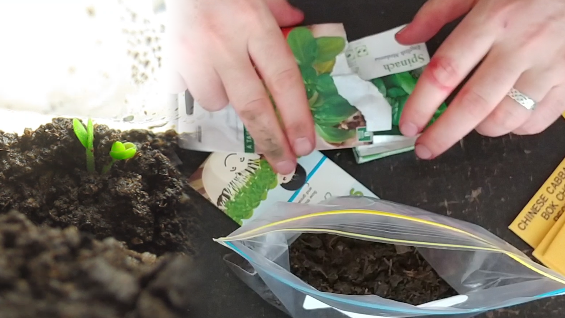 Indoor gardening - create a microclimate dirtbag!